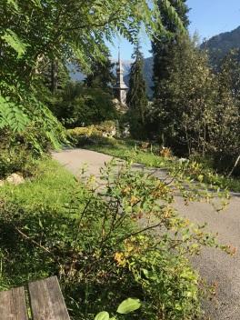 Jardin de la Jaÿssinia - © Valsamont Tous droits réservés